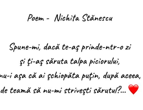 Ora de poezie